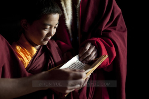 Learning your Scriptures, in Shangri-La